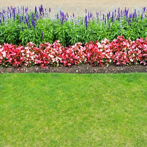 Lawn Edge Flower Bed