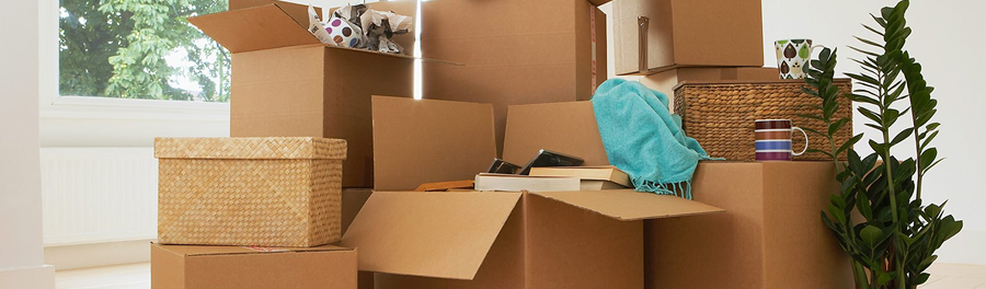 Moving Costs Temporary Storage